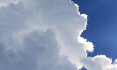 Otwórz niebo – Odpust zupełny i cząstkowy